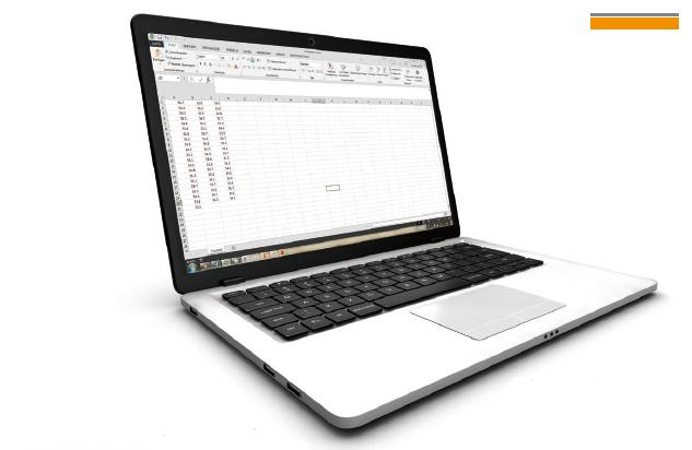 通过可选的PC软件PC-Datex可将数据导出到Excel表格内